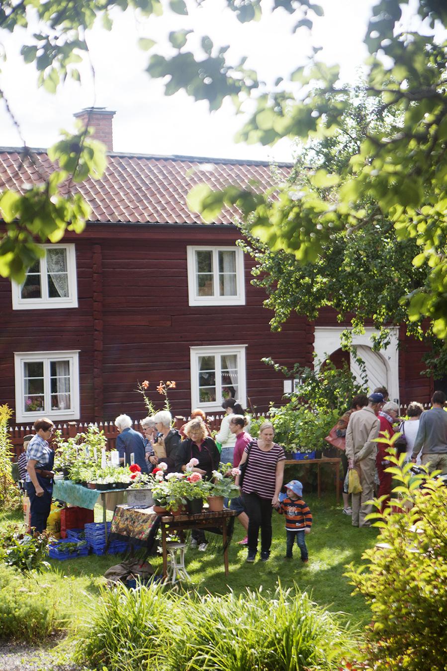 Trädgårdsmarknad-8L