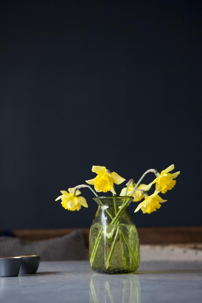 Påsklilja, påskliljor